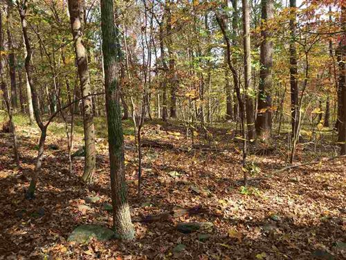 Photo of 477 FOOTHILLS DR, NELLYSFORD, VA 22958 (MLS # 610518)