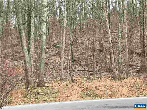 Photo of 43 DEER SPRINGS LN, WINTERGREEN RESORT, VA 22967 (MLS # 601519)