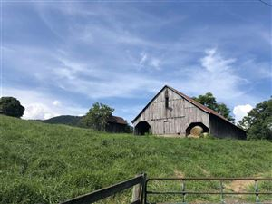 Photo of 4419 OLD ROBERTS MOUNTAIN RD, FABER, VA 22938 (MLS # 594572)