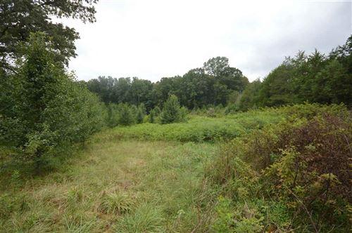Photo of 1040 MATTHEW MILL RD, RUCKERSVILLE, VA 22968 (MLS # 609639)