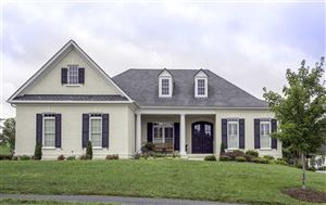 Photo of 2461 PENDOWER LN, KESWICK, VA 22947 (MLS # 580657)