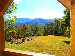 Photo of 1233 COFFEY HOLLOW LANE, TYRO, VA 22976 (MLS # 592665)