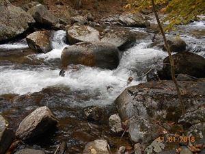 Photo of TBD CRABTREE FALLS HWY #11, TYRO, VA 22976 (MLS # 597803)