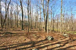 Photo of 84 DEER SPRINGS LN, WINTERGREEN RESORT, VA 22967 (MLS # 586812)