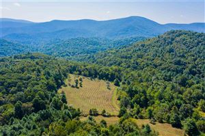 Photo of CRABTREE FALLS HWY, MONTEBELLO, VA 24464 (MLS # 591823)