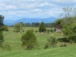 Photo of 13064 CONSTITUTION HWY, ORANGE, VA 22960 (MLS # 595849)