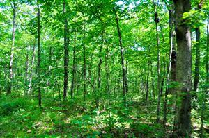 Photo of 0 Polly Ln, Signal Mountain, TN 37377 (MLS # 1278014)