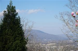 Photo of 0 S Crest Rd, Chattanooga, TN 37404 (MLS # 1277158)