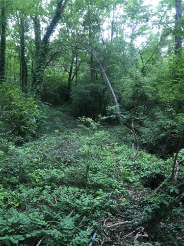 Photo of 0 Old Ascalon Road, Lookout Mountain, GA 30750 (MLS # 1319184)