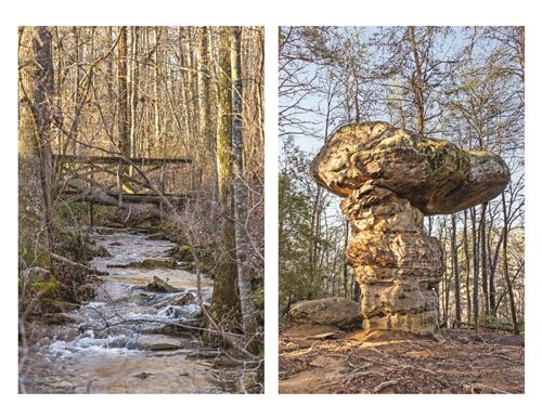 Photo of 180.7 Acre Wagner Tract, Signal Mountain, TN 37377 (MLS # 1335243)