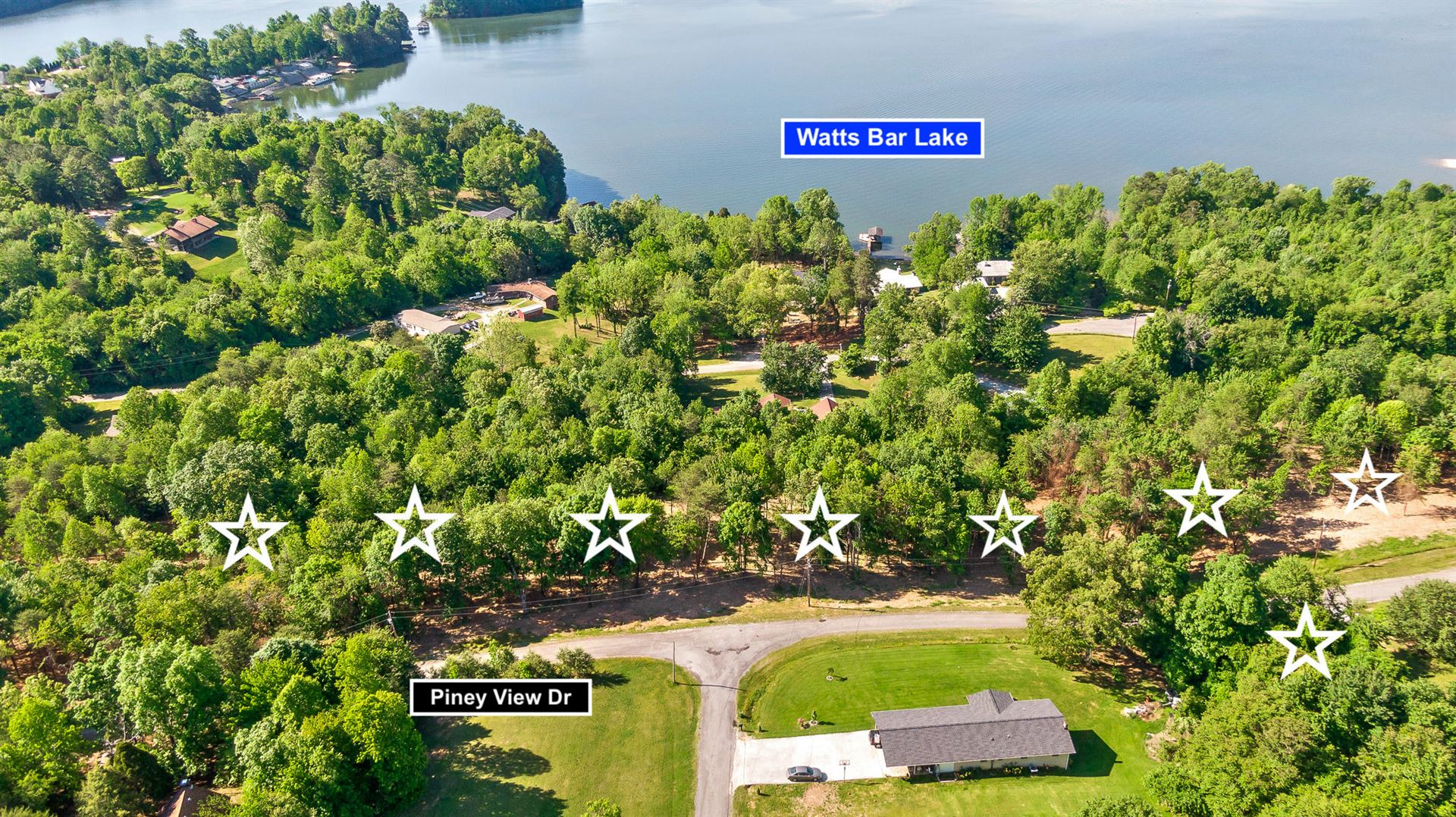Photo for 1 Piney View Dr, Spring City, TN 37381 (MLS # 1336255)