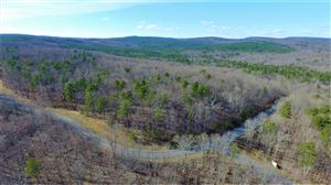 Photo of 0 Clear Brooks Dr, Signal Mountain, TN 37377 (MLS # 1287317)