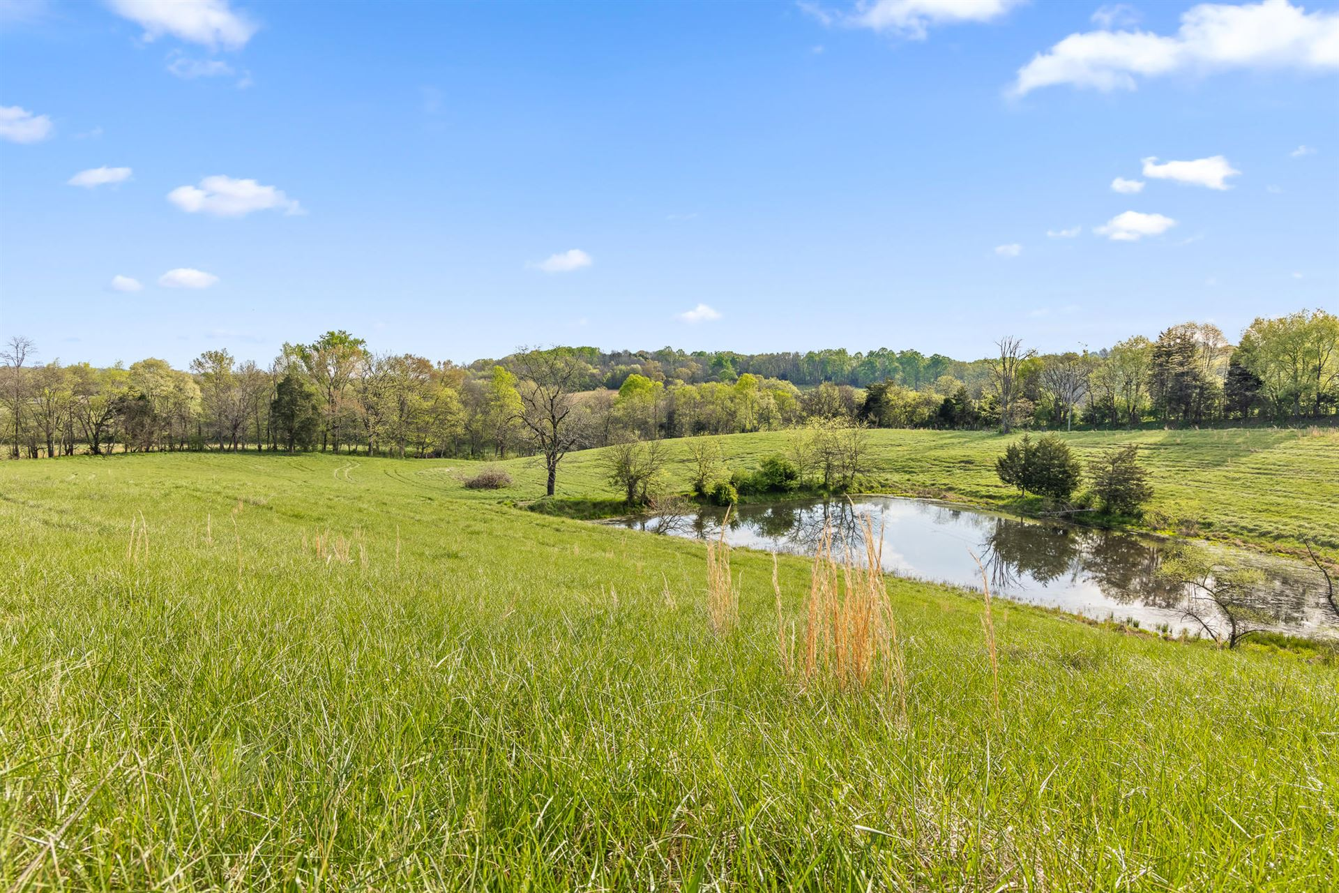 Photo for 0 Sands Rd, Sweetwater, TN 37874 (MLS # 1334340)