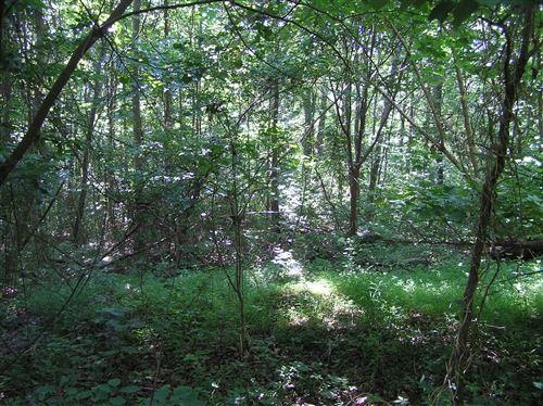 Photo of Lot 1 Timber Ln, Dunlap, TN 37327 (MLS # 1337866)