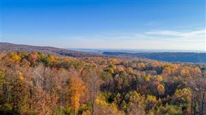 Photo of 0 Lookout Crest Ln, Lookout Mountain, GA 30750 (MLS # 1273927)