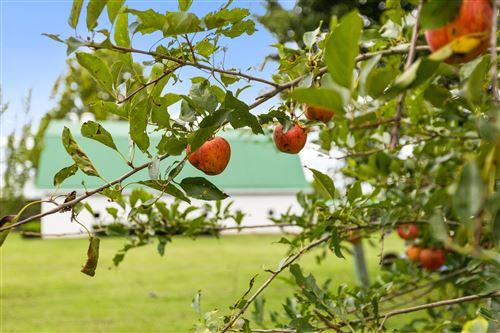 Tiny photo for 4619 S Hwy 341, Chickamauga, GA 30707 (MLS # 1339938)
