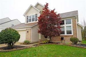 Photo of 6707 Spring Mist Court, Deerfield Township, OH 45040 (MLS # 1644053)