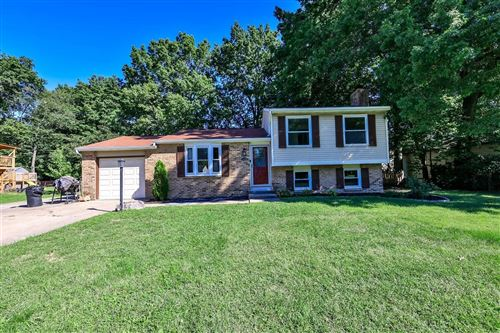 Photo of 1374 Cottonwood Court, Miami Township, OH 45150 (MLS # 1719399)