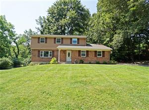 Photo of 1731 Pheasant Hills Drive, Loveland, OH 45140 (MLS # 1643487)