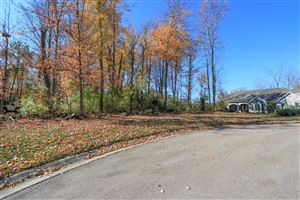 Photo of 0 Meadowview Lane #98, South Lebanon, OH 45065 (MLS # 1643957)