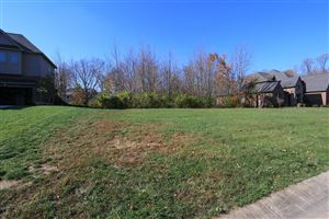 Photo of 0 Meadowview Lane #93, South Lebanon, OH 45065 (MLS # 1643964)