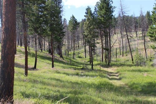 Photo of Corral Gulch Road, Canyon City, OR 97820 (MLS # 220104153)