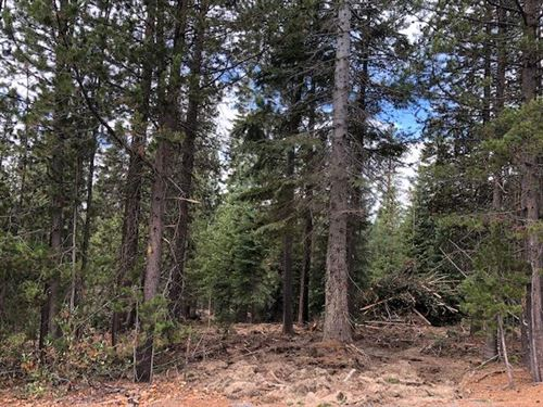 Photo of 31 Clear Spring Way, Crescent Lake, OR 97733 (MLS # 220134201)