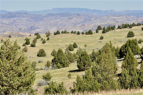 Photo of 0000 Hwy 218 Highway, Antelope, OR 97001 (MLS # 220130434)