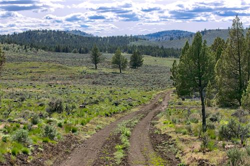 Photo of 0 Merrill Road, Brothers, OR 97712 (MLS # 220101499)
