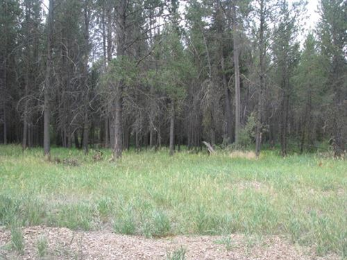 Photo of 54425 Silver Fox Drive, Bend, OR 97707 (MLS # 220128512)