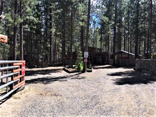 Photo of 1500 Wible Road, Crescent, OR 97733 (MLS # 220101550)