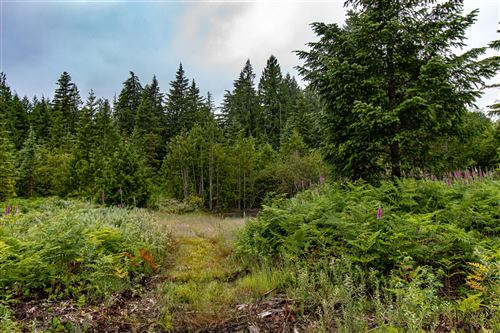 Photo of 64350 E Brightwood loop Road, Brightwood, OR 97011 (MLS # 202002639)