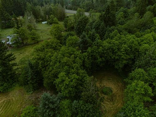 Photo of 64432 E Brightwood Loop Road, Brightwood, OR 97011 (MLS # 202002641)