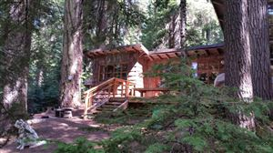 Photo of 22865 Hwy 58 #11, Crescent Lake, OR 97733 (MLS # 201604672)