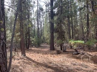 Photo of Gilchrist, OR 97737 (MLS # 202000724)