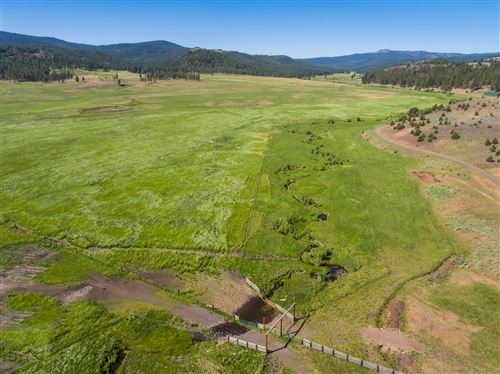 Photo of 21762 Badger Creek Road, Mitchell, OR 97750 (MLS # 220110775)