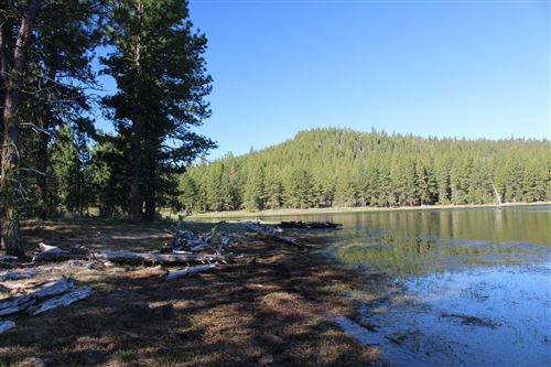 Photo of Lakeview, OR 97630 (MLS # 202000826)