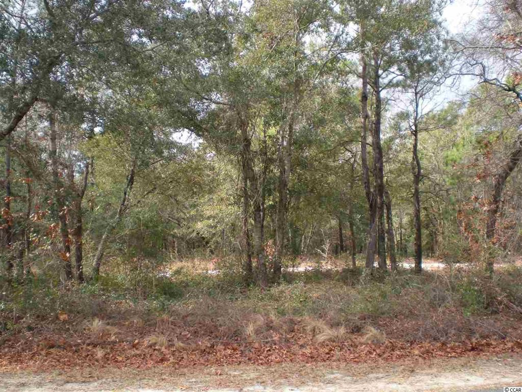 2858 Folly Breeze Ln., Bolivia, NC, 28422, Not within a Subdivision Home For Sale
