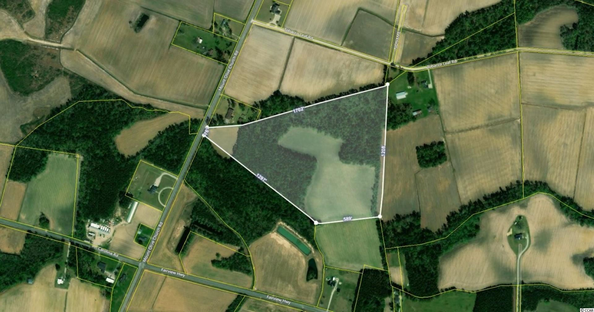 TBD2 Mount Olive Church Rd., Green Sea, SC, 29545, Not within a Subdivision Home For Sale