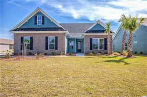 Photo of 1108 Glossy Ibis Dr., Conway, SC 29526 (MLS # 1906037)