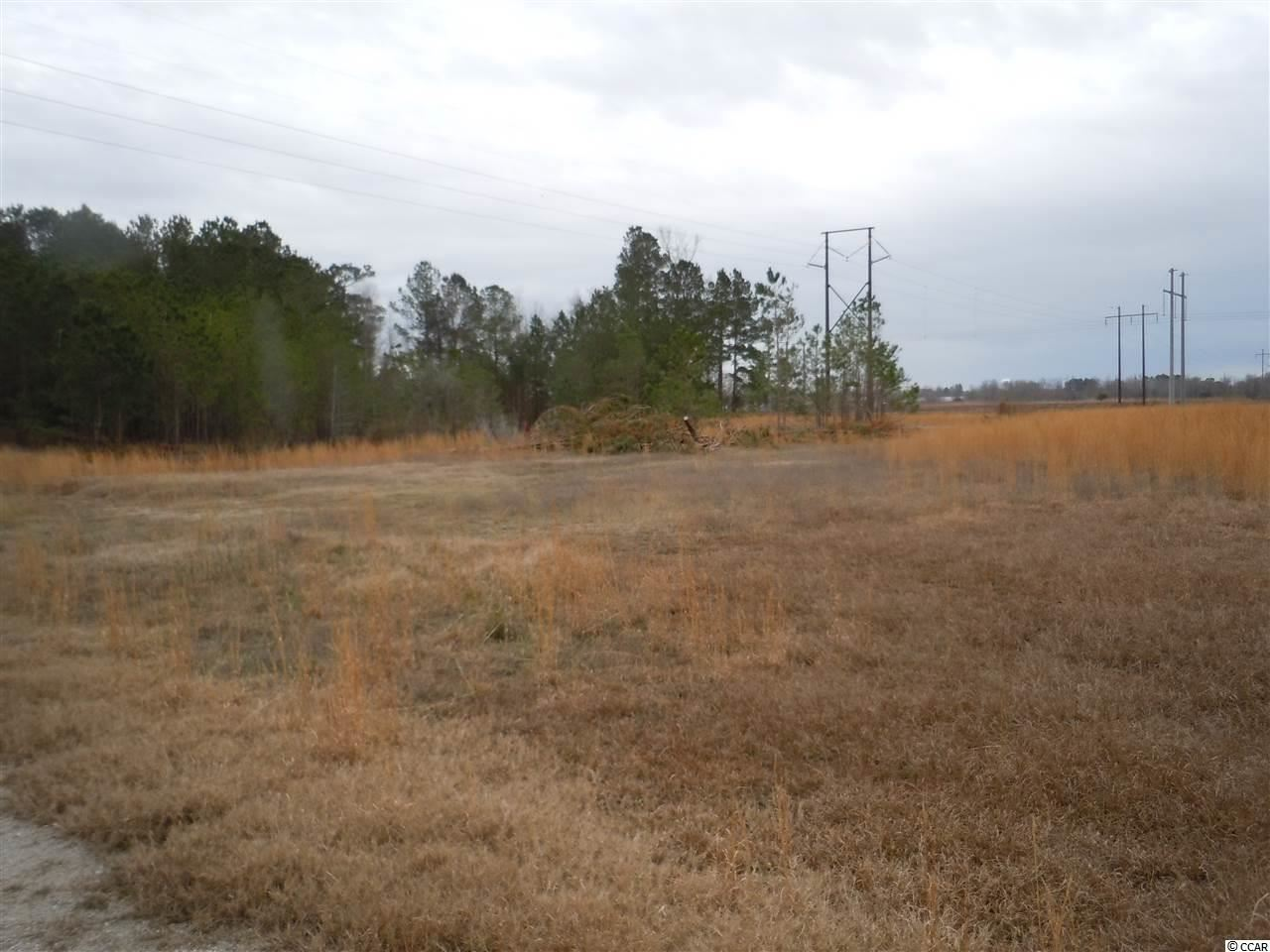 1255 Willoughby Rd., Tabor City, NC, 28463, Not within a Subdivision Home For Sale