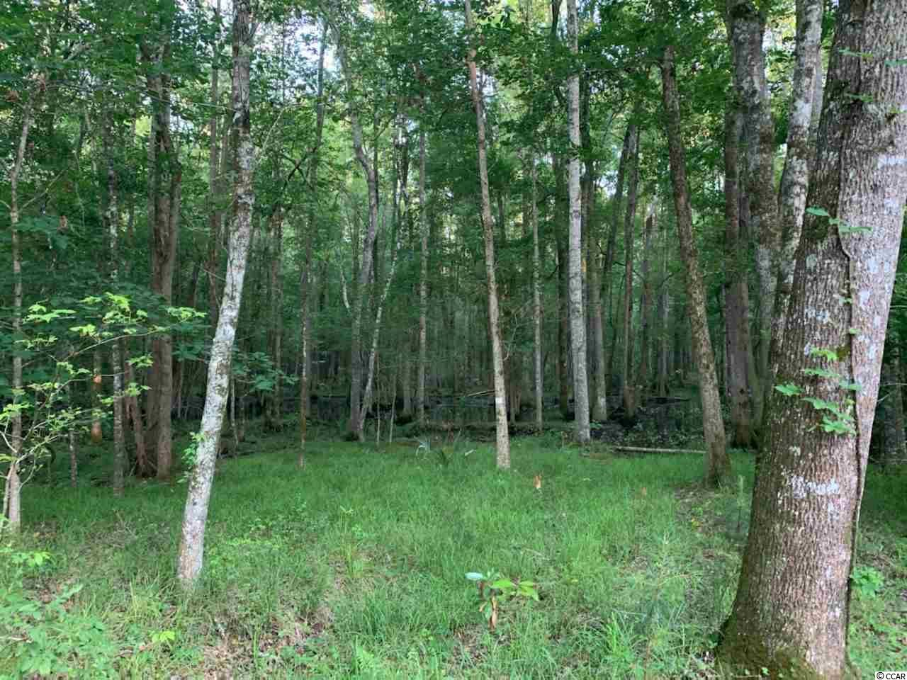 59 Lark Ln., Andrews, SC, 29510, Not within a Subdivision Home For Sale