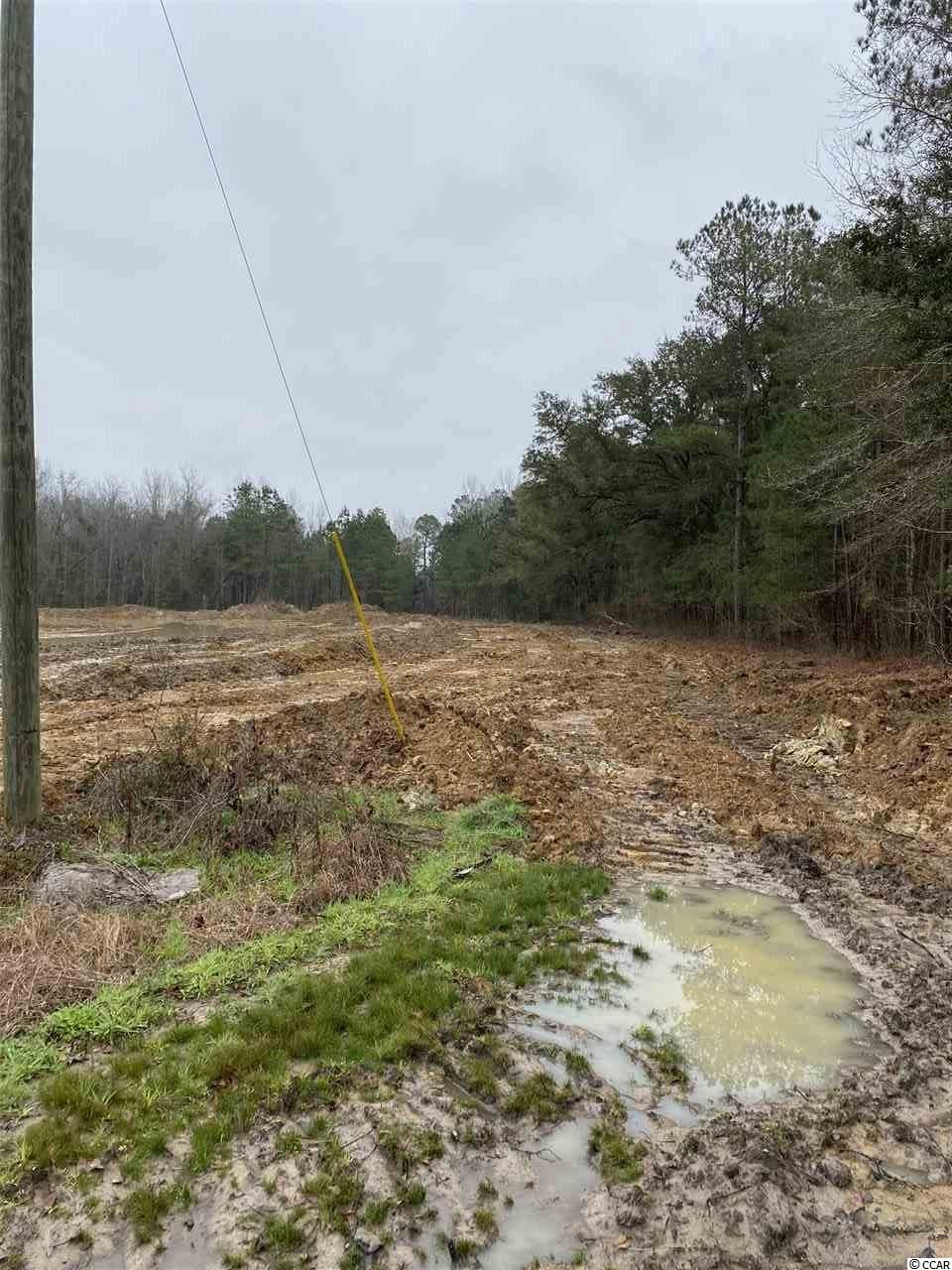 0 Coleman Rd., Greeleyville, SC, 29056, Not within a Subdivision Home For Sale