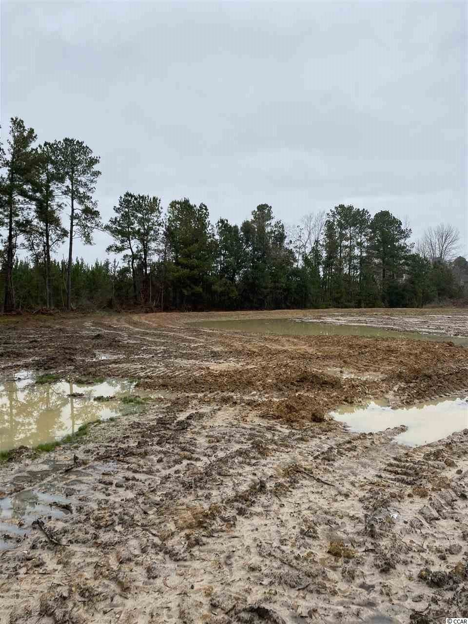 0 Coleman Ave., Greeleyville, SC, 29056, Not within a Subdivision Home For Sale