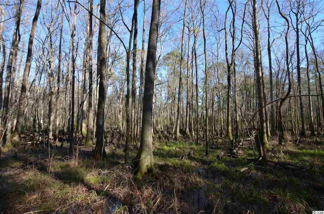 2290 Palmers Bridge Rd., McClellanville, SC, 29458, Not within a Subdivision Home For Sale