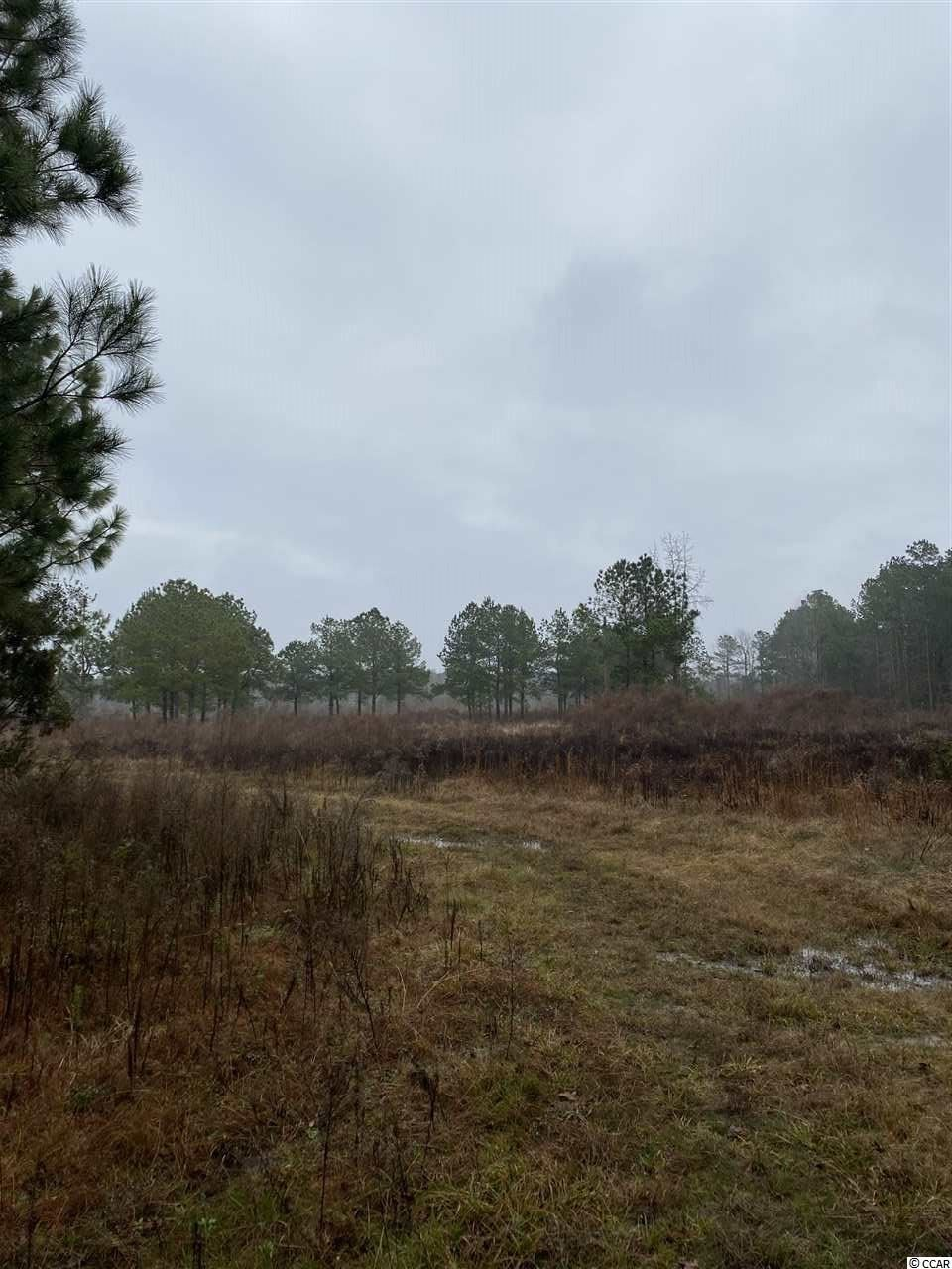 tbd Joseph Rd., Greeleyville, SC, 29056, Not within a Subdivision Home For Sale
