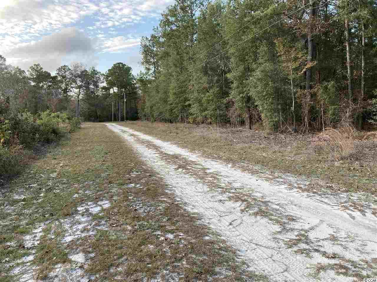 596 Gene Dr., Hemingway, SC, 29554, Not within a Subdivision Home For Sale