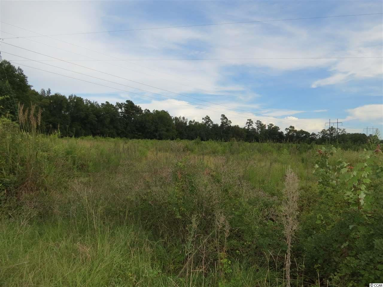 Tract 3 Tupperware Rd., Hemingway, SC, 29554, Not within a Subdivision Home For Sale