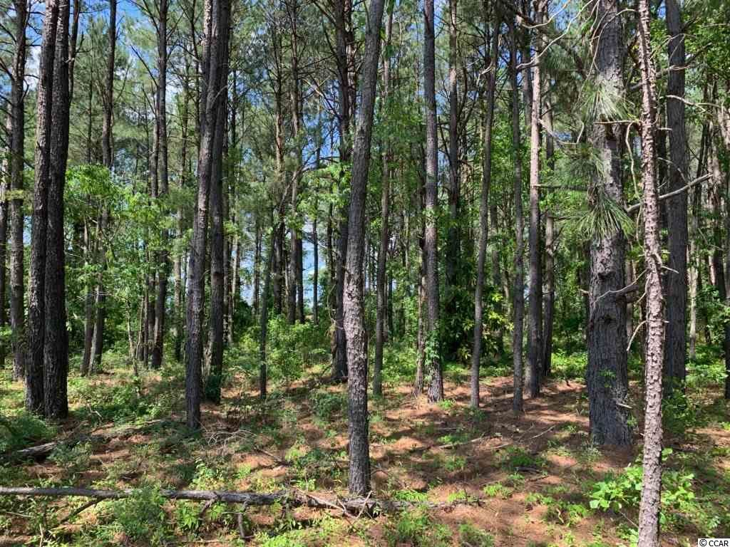 000 Gist Ln., Manning, SC, 29102, Not within a Subdivision Home For Sale