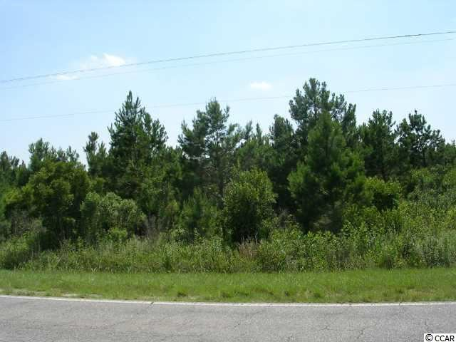 TRACT A Highway 9, Nichols, SC, 29581, Not within a Subdivision Home For Sale